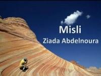 Misli Ziada Abdelnoura – pps