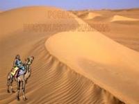 Pouka pustinjskog kamena – pps