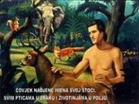 Stvaranje svijeta i čovjeka (2)