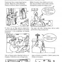 Sveti Franjo Asiški i ekologija
